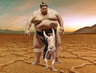 david och goliat sumo