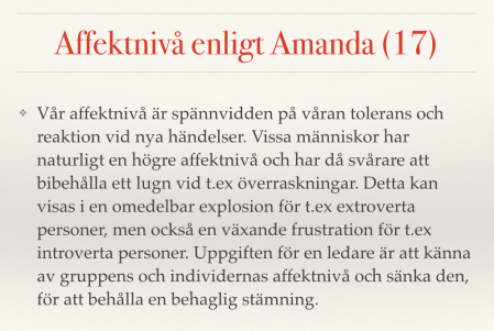 AFFEKTNIVÅ AMANDA